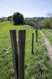 Il sentiero per Pian della Cavalla