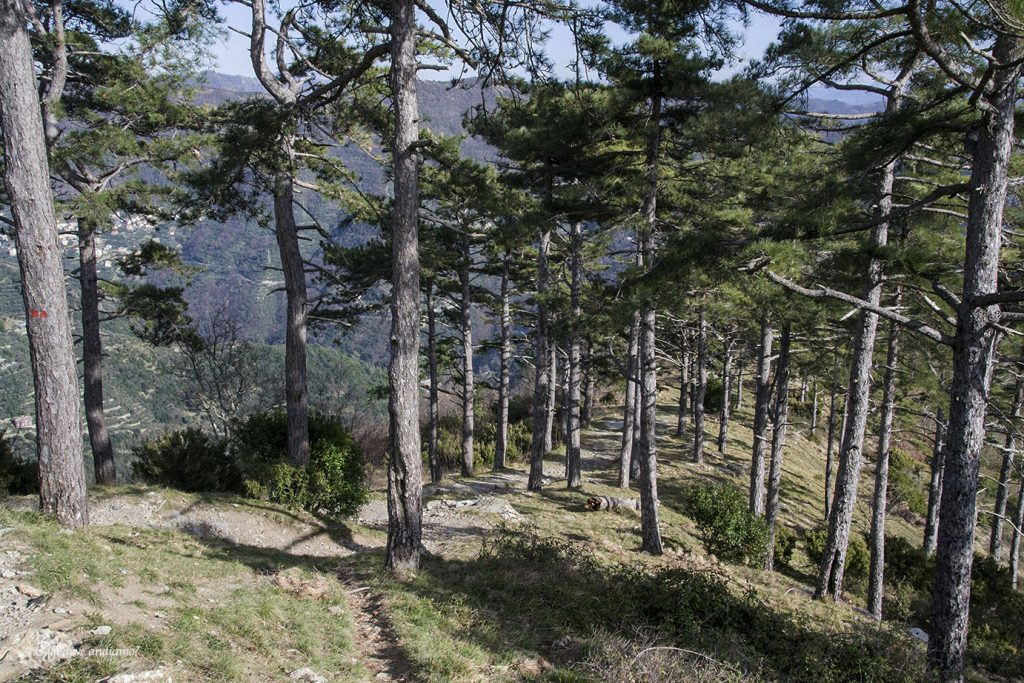 Consigli per il trekking