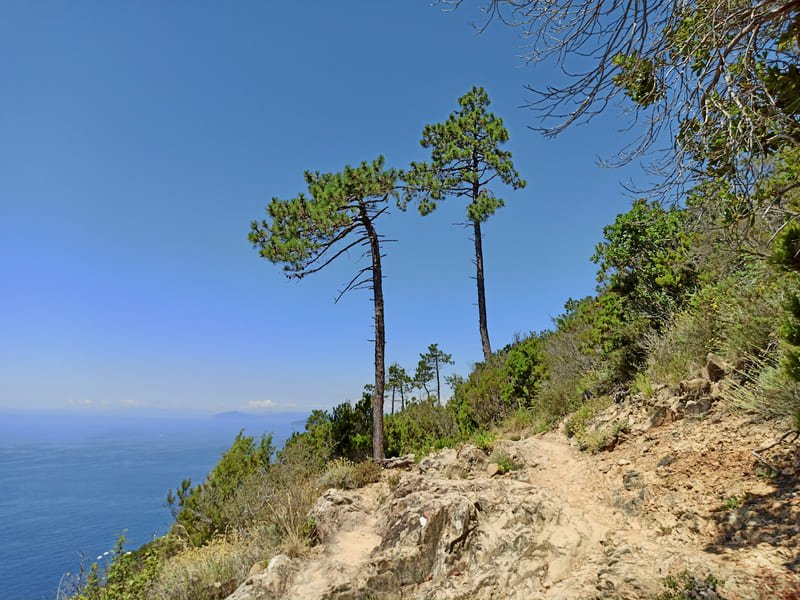 Escursione da Levanto a Monterosso